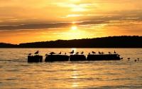 Sonnenuntergang in Kamminke