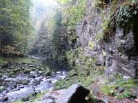 Ringelai: Buchberger Leite